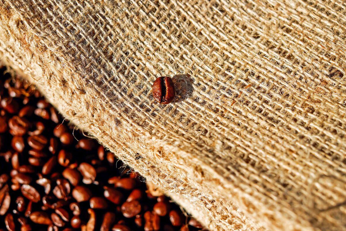 精品咖啡的定義
