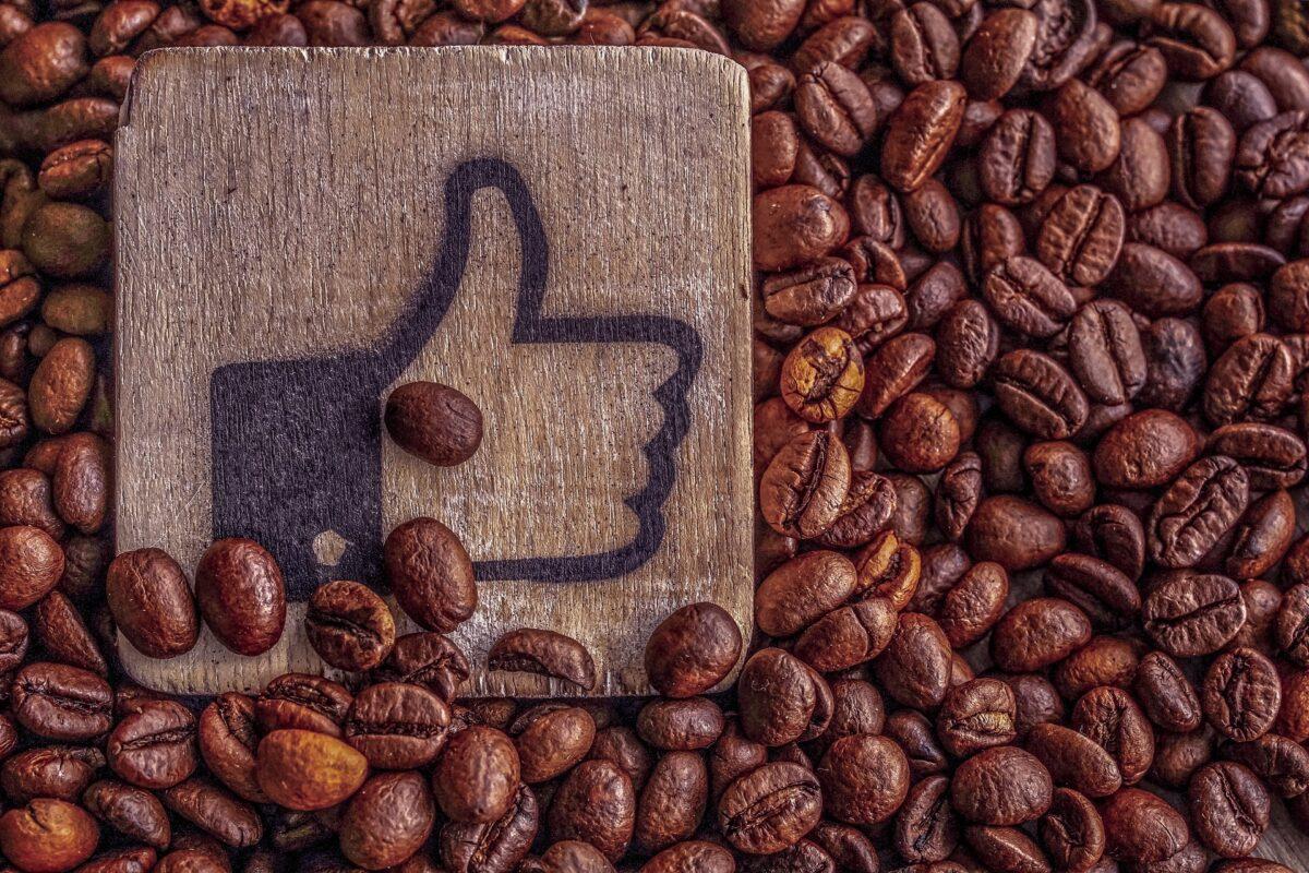 選擇優質咖啡豆