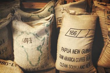 肯亞咖啡豆分類