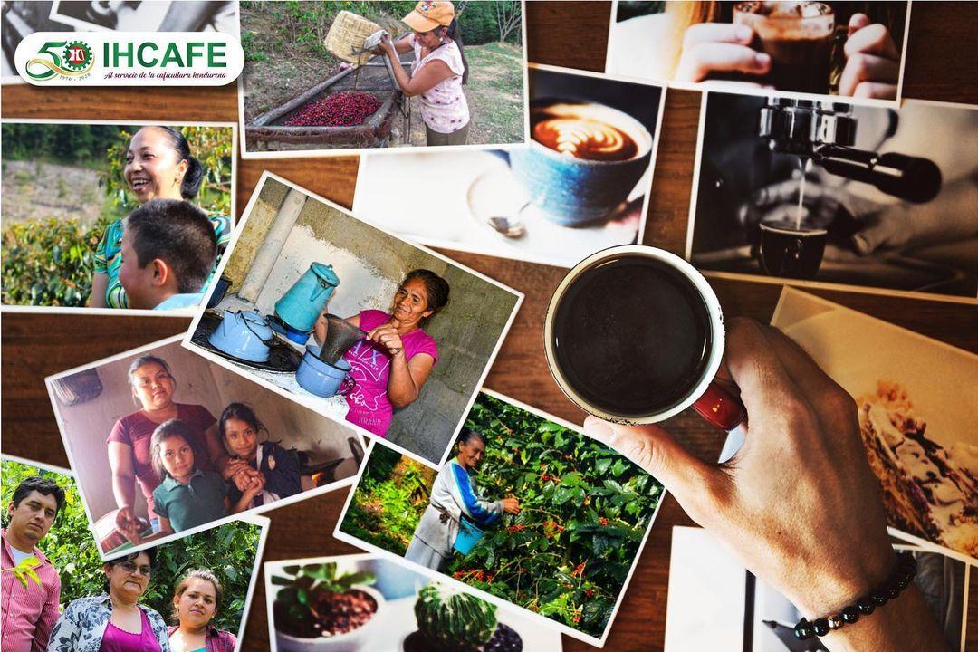 宏都拉斯精品咖啡豆